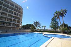 Ferienwohnung in La Pineda - Turquesa 4:300m playa-Centro La Pineda-Piscina-Wifi y Ropa GRATIS-Climatisación disponible