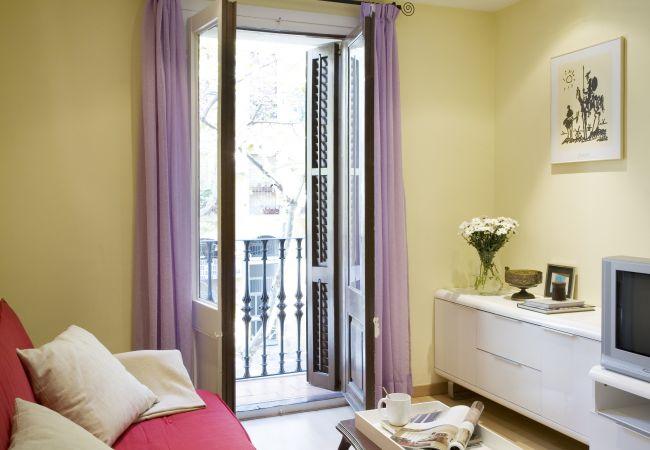 Mooi appartement met balkon in de wijk Sant Antoni in Barcelona