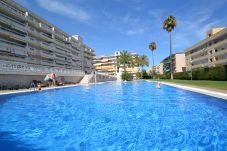 Apartment in La Pineda -  Aguamarina 1: 300m La Pineda's beach, centre-Pool-Free Wifi,linen