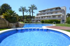 Apartment in Salou - Tramontana:10000m2 garden with pools-FREE AAC & WIFI-Near beach and center La Pineda