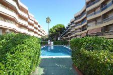 Apartment in Cambrils - Sol España T1: Beachfront Cambrils-Pool-Free A/C,Wifi