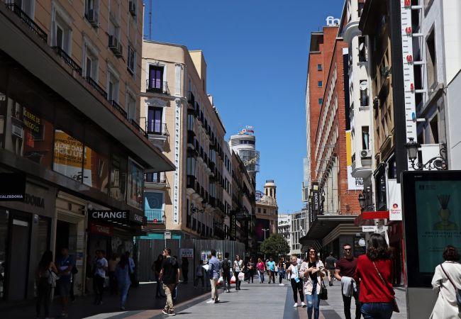 Apartment in Madrid - Ático MADRID Downtown Museo Reina Sofía-Atocha (DF21)