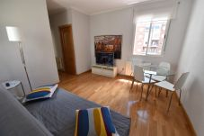 Apartment in Madrid - Ático MADRID Downtown Museo Reina Sofía-Atocha (DF21)