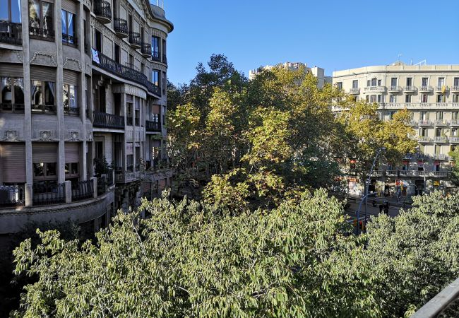 Apartment in Barcelona - CALABRIA, large, comfortable flat ideal for families or groups in Eixample, Barcelona center.