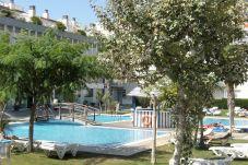 Apartment in Estartit - ILLA MAR D'OR 237