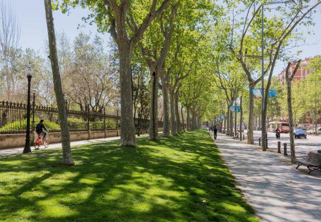 Апартаменты на Барселона / Barcelona - Family CIUTADELLA PARK, идеальная квартира для семей и групп в Барселоне